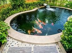 Schwimmteich Selber Anlegen - 60 backyard pond ideas photos