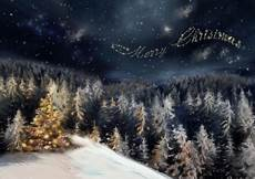 merry christmas nature images merry christmas forests nature background wallpapers desktop nexus image 537636