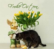 Zwei Hasen W 252 Nschen Frohe Ostern Foto Bild Spezial