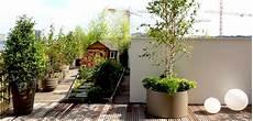 Quelles Plantes Pour Des Pots D Ext 233 Rieur
