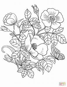 spring flowers coloring page free printable coloring pages