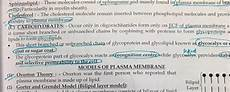 what is the function of the cholesterol molecules in a cell membrane quora