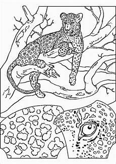mandala ausdrucken erwachsene genial 25 gut aussehend