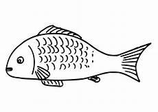 ausmalbilder fisch malvorlagen ausdrucken 4