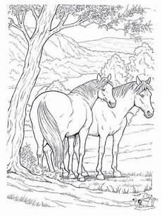 Ausmalbilder Pferde Western Pferde Zum Ausdrucken Mit Bildern Ausmalbilder Pferde