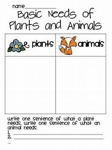 plants and animals worksheets for kindergarten 13507 basic needs of animals and plants third grade science grade science second grade science