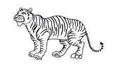 Malvorlagen Tiger Motor Tigers Coloring Pages Free Coloring Pages