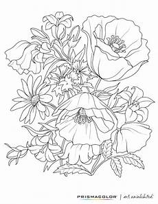 what a beautiful flower coloring page colouring
