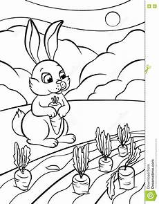 coloring pages animals rabbit stock vector
