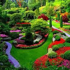 les solaires de jardin 61030 la p 233 pini 232 re arbres arbustes confi 232 res et fruitiers les jardins de burnhaupt