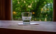 sta su bicchieri vetro germoglio della castagna in un vetro di acqua stilllife