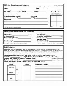 classifying plants worksheets 3rd grade 13524 12 best images of classifying animals worksheet animal classification worksheet classifying