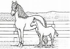 pferde ausmalbilder a4 ausmalbilder pferde a4