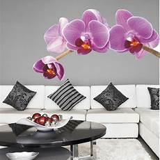 wandtattoo orchidee wandtattoos folies wandtattoo orchidee