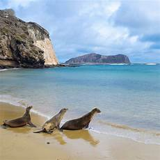 february galapagos islands a month by month guide to the best island vacations coastal living