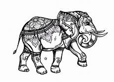 elephant elephants coloring pages
