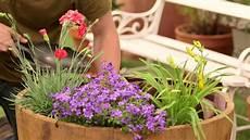 Comment Planter Et Entretenir Des Plantes Vivaces Pour