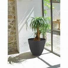 Pot De Fleur Gris Anthracite Rond 28 3 Litres Chez Jardin