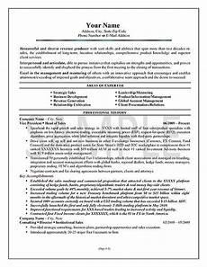 executive sales resume exle resume exles