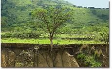 le de sol 15031 suds en ligne les sols des milieux vivants tr 232 s fragiles