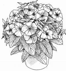 Ausmalbilder Blumen A4 Ausmalbilder Blumen A4 Amorphi