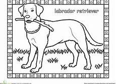 labrador worksheet education