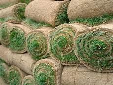 tappeto erboso sintetico prezzi prezzi prato a rotoli prato erba a rotoli
