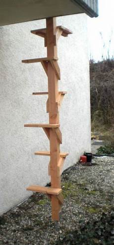 Cat Ladder To Get To Second Story Balcony Or Deck Cat