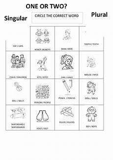 irregular plural nouns worksheet homeschooldressage com