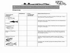 animal adaptations worksheets middle school 13966 animal adaptations worksheets homeschooldressage