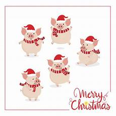 merry christmas with cute pig vector premium download