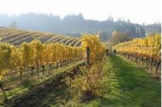 willamette valley heelers the 10 best willamette valley wineries to visit in 2019