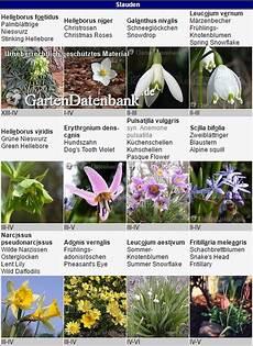 rote liste gesch 252 tzte pflanzen seltene bedrohte arten