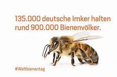 Biene Malvorlagen Xing 5 Fakten 252 Ber Die Biene Agrarheute