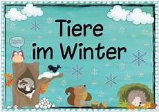 Ideenreise Themenplakat Quot Tiere Im Winter Quot