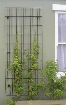 treillis pour plantes grimpantes 82787 treillis pour plantes grimpantes projet bureaux ubisoft treillis treillage et treillis jardin