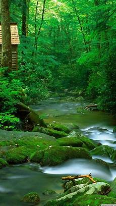 Nature Wallpaper Free For Mobile nature wallpaper free hd nature wallpapers for