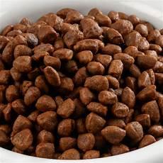 croquette chien croquette pour chien 226 g 233 viande fraiche