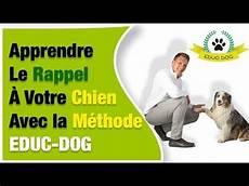 comment dresser un chien gratuit tuto comment apprendre le rappel a chien