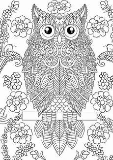 Ausmalbilder Muster Eule Pin By Furnas On Design Patterns Owl Coloring Pages