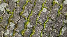 anti mousse toiture fait maison eliminer la mousse sur une terrasse c 244 t 233 maison