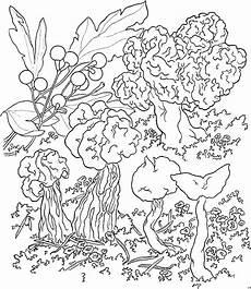 Gratis Malvorlagen Blumen Pilzarten Ausmalbild Malvorlage Blumen
