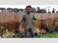 The Black Gardener AKA The Instant Gardener   YouTube