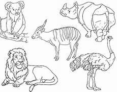 Ausmalbilder Tiere Afrika Wilde Tiere Ausmalbilder Ausmalbilder Tiere Tiere