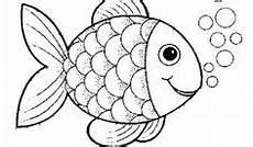 die besten 25 malvorlage fisch ideen auf