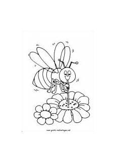 Biene Ausmalbild Kostenlos Bienen Malvorlagen Kostenlose Malvorlagen Gratis Und