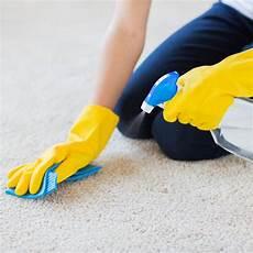 Teppich Reinigen Hausmittel Und Tipps Brigitte De