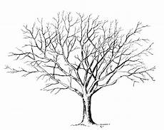 Malvorlagen Kostenlos Baum Ausmalbilder Baum Kostenlos Malvorlagen Zum Ausdrucken