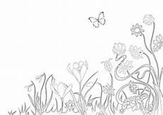 Ausmalbild Schmetterling Wiese Ausmalbilder Fr 252 Hling Fr 252 Hlingsbasteln