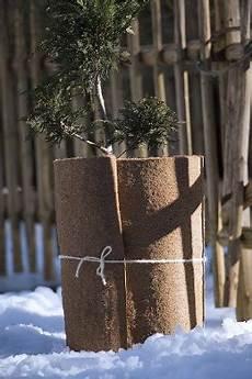 Balkonpflanzen Winterfest Machen Pflanzen Richtig